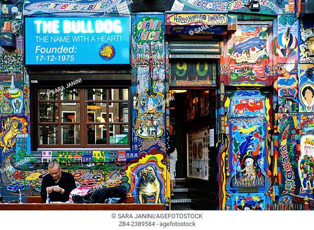 Coffeeshop, Red Light District (De Wallen), Amsterdam, Netherlands, Europe