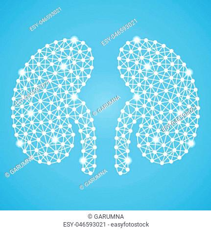 Human Kidney Isolated On A Green Background. Vector Illustration.Nephrology. Creative Medical Concept