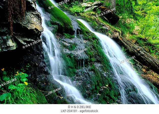 Europe, Germany, Bavaria, Bavarian forest nature park, Hoellbachgspreng