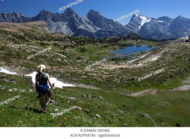 Hiker descending meadows to Lower Limestone Lakes Basin, Stiletto Peak, Mt Battisti, Mount Swiderski, Mount Cadorna, Mount Abruzzi, Mount Lancaster