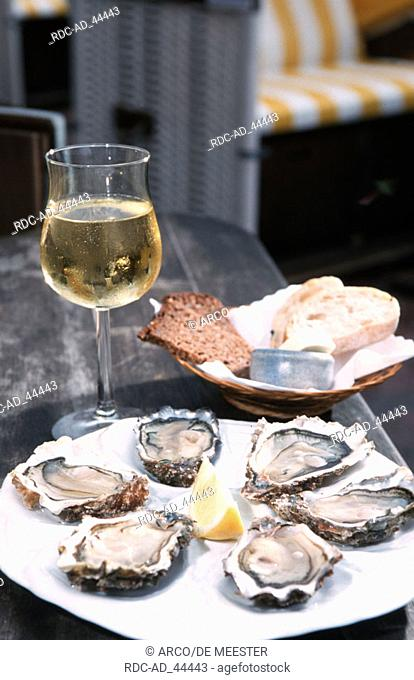 Plate with oysters and glass of white wine Sylt Schleswig-Holstein Germany
