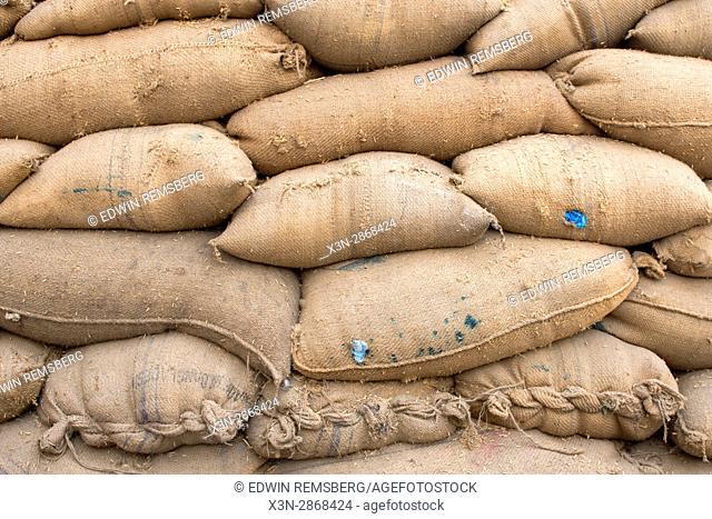 Local grains are stacked in a farming facility in New Delhi, India