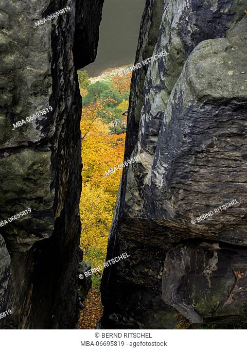 Autumn mood at the Bastei, Saxon Switzerland, Elbe Sandstone Mountains, Germany