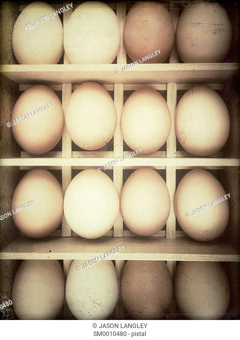 Rows of fresh chicken eggs in a wooden box
