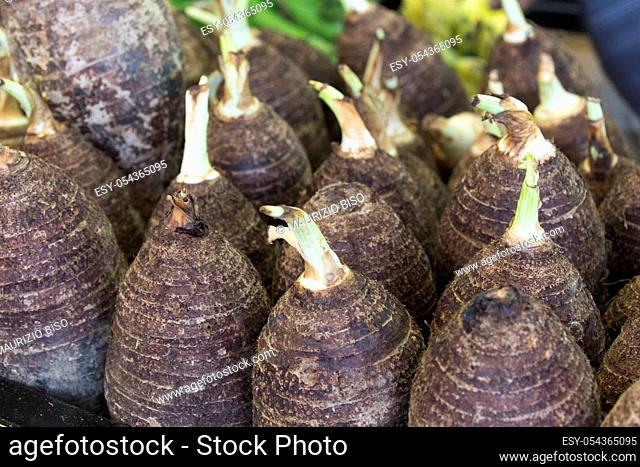 Taro and igname vegetables at market in New Caledonia
