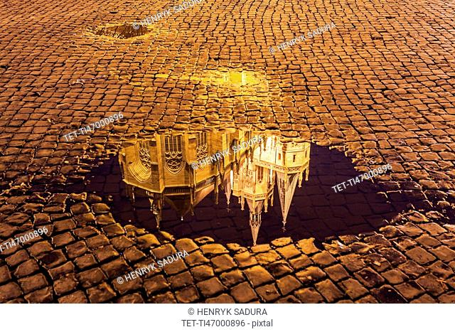 Reflection of Erfurt Cathedral in puddle