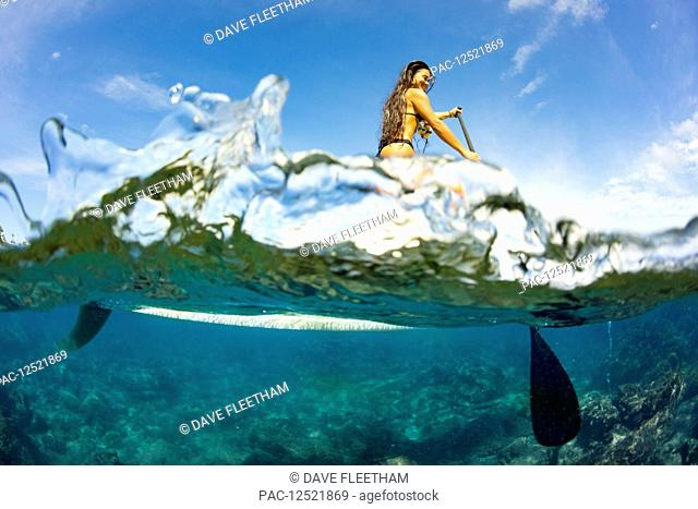 Split image of above and below water and a woman on a stand up paddle board; Hawaii, United States of America