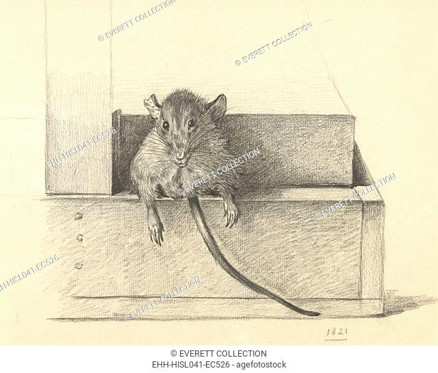 Mouse Caught in a Trap, by Jean Bernard, 1825, Dutch pencil drawing. (BSLOC-2016-1-273)