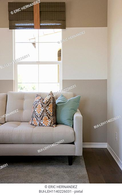 Cushions on cropped couch against the window in the living room