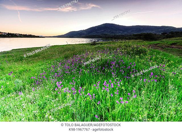Reservoir Plasencia, Caceres, Extremadura, Spain, europe