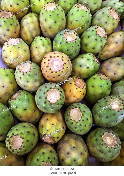 Prickly pears for sale