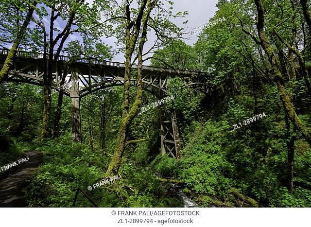 Old bridge at Latourell Falls is a waterfall along the Columbia River Gorge in Oregon, within Guy W. Talbot State Park. The Historic Columbia River Highway...