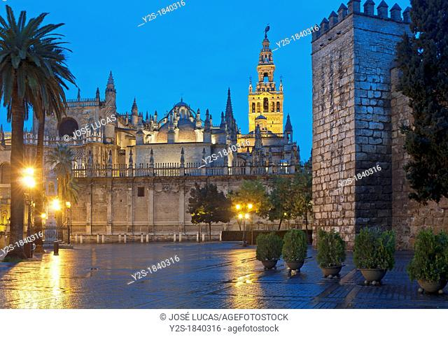 Cathedral Giralda and Royal Alcazar, Seville, Region of Andalusia, Spain, Europe