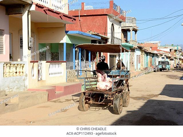 Delivering a butchered hog in horse cart, Trinidad, Cuba
