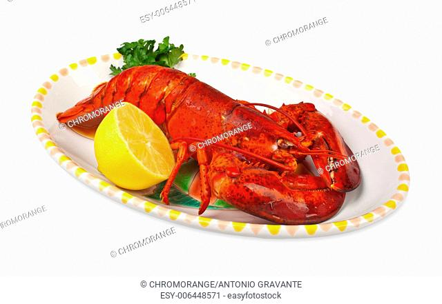 Red lobster with lemond ad parsley on white background