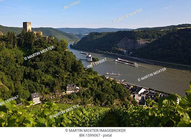 Burg Gutenfels Castle with vineyards above Burg Pfalzgrafenstein Castle in Kaub am Rhein, Rhineland-Palatinate, Germany, Europe