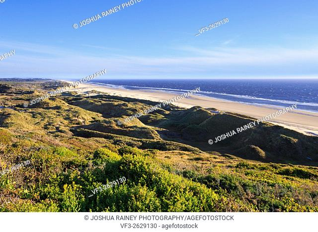 Oregon beach seen from a high vantage point with the ocean and sand dunes