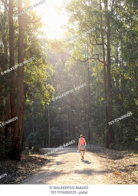 Australia, New South Wales, Port Macquarie, Rear view of mature woman walking along dirt road in forest