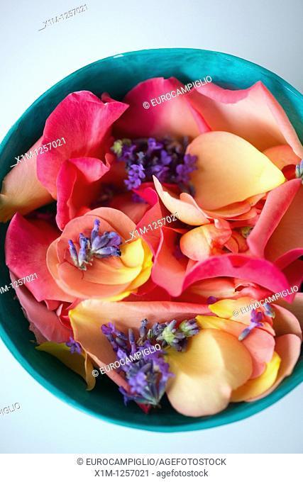Flowers in bowl