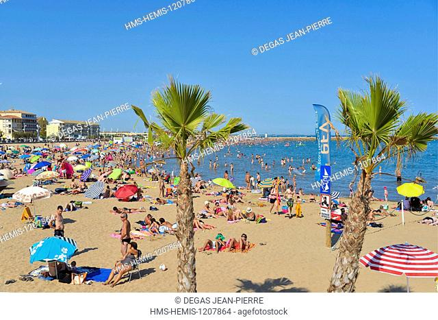 France, Herault, Valras Plage, vacationers taking the sun on a sandy beach with palm trees in foreground