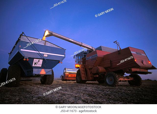 Transferring corn from combine to grain cart, night view. Kansas. USA