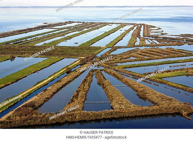 France, Gironde, Bassin d'Arcachon, Certes Graveyron Domain (aerial view)