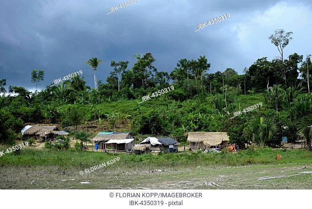 Indigenous Village Sawle Muybu, people of Mudndururú, river Rio Tapajos, Amazon rainforest, district Itaituba, Pará state, Brazil