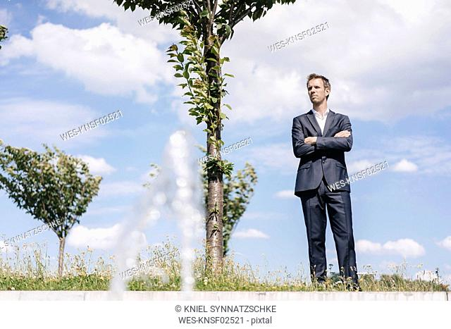 Businessman standing on a field with trees