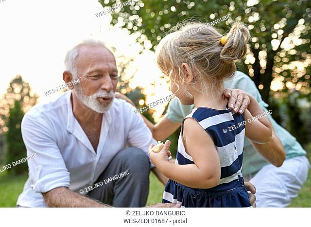 Grandparents with granddaughter in garden
