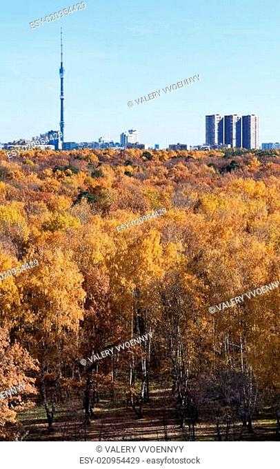 view of TV tower and autumn forest
