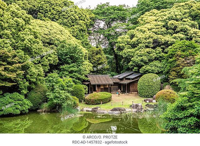 Japanese style garden at courtyard, Tokyo National Museum, Ueno Park, Tokyo, Japan