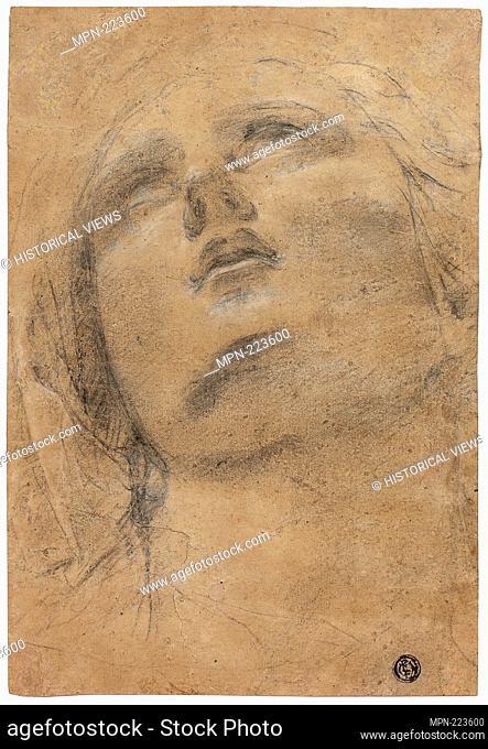 Head of the Virgin Looking Upwards - c. 1615 - Jacopo Cavedone Italian, 1577-1660 - Artist: Jacopo Cavedone, Origin: Italy, Date: 1610–1620, Medium: Black chalk