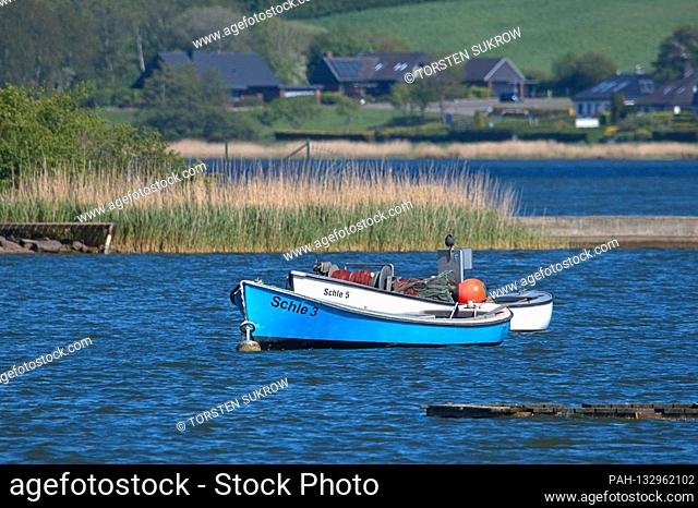 "19.05.2020, Schleswig, two boats """"Schle 3"""" and """"Schle 5"""" of the fishermen from the Schleswig Holm lie with material in front of the residents on the banks..."