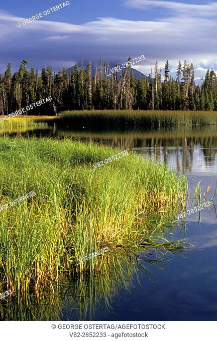 Little Lava Lake, Cascade Lakes National Scenic Byway, Deschutes National Forest, Oregon