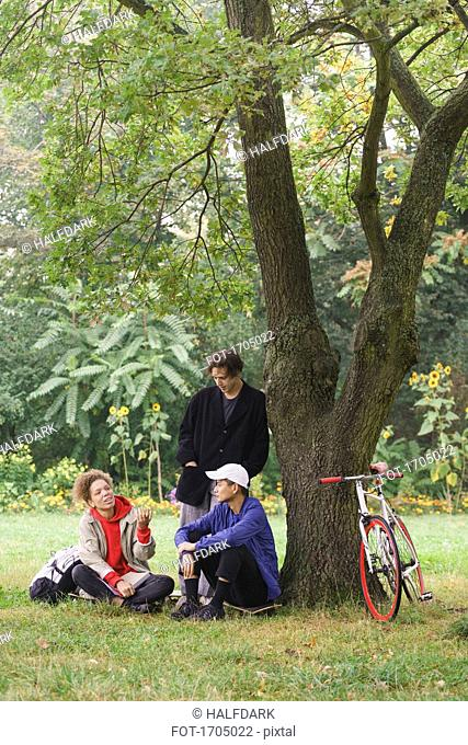 Friends talking while relaxing below tree on grassy field at park