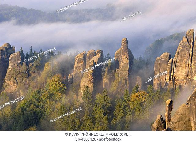 Rock serrated crown, Viererturm and Schramm gatekeepers in morning mist, Autumn, Elbe Sandstone Mountains, Saxon Switzerland, Saxony, Germany