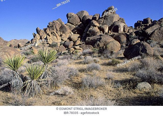 Rocky landscape at Joshua Tree National Park, California, USA
