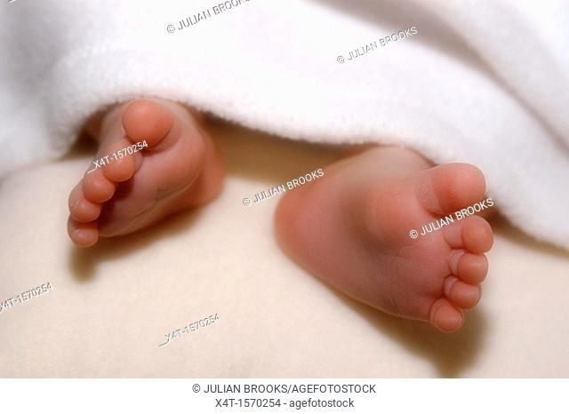 A new born baby's feet peeping under a blanket