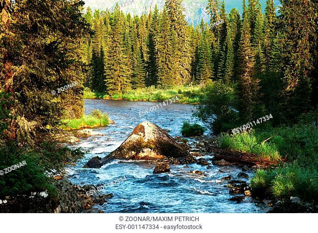 Morning on mountain river