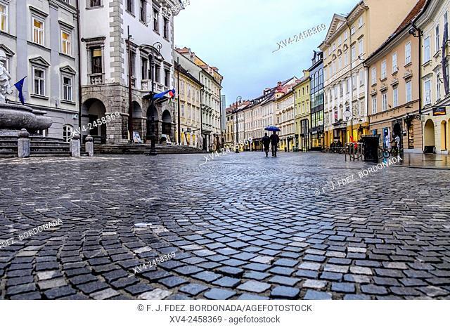 Mestni Trg Square surface detail, Ljubljana, Slovenia, Europe