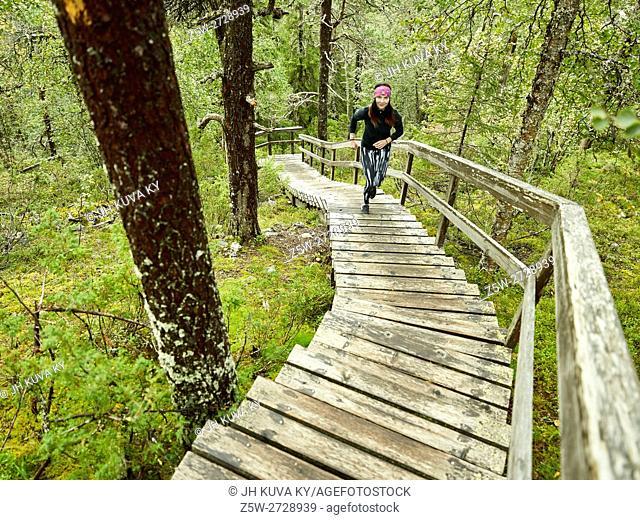 KUUSAMO, FINLAND: Konttainen and stair runner