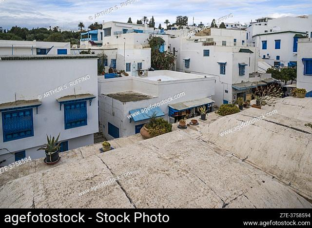 Sidi Bou Said, rooftop view. The blue and white tourist village overlooking the Mediterranean Sea. Tunisia, Africa