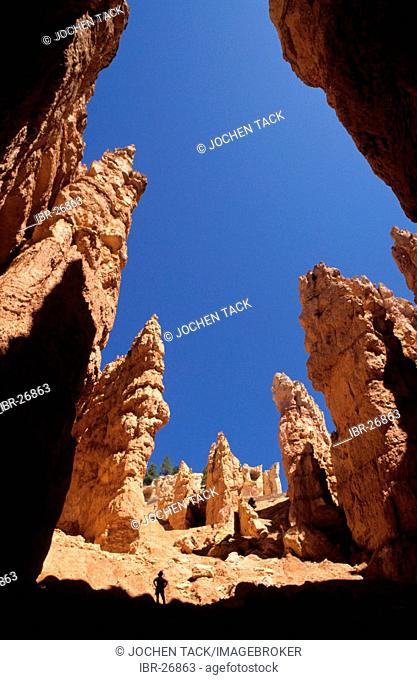 USA, United States of America, Utah: Bryce Canyon National Park, The Wallstreet