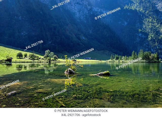 Mooskaser Saletalm at Koenigssee, Berchtesgaden National Park, Berchtesgadener Land, Upper Bavaria, Bavaria, Germany, Europe