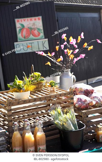 Farm shop with apple must, daffodils and Easter decoration of a sprig of twigs decked with coloured feathers