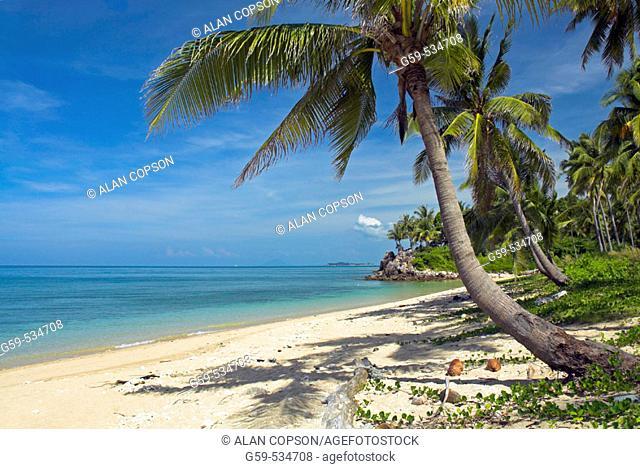Asia Thailand Andaman Sea Coast Ko Lanta Hat Phra Ae (Phra Ae Beach)