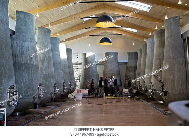 A modern vinification cellar with organically shaped concrete tanks (Beauregard, France)