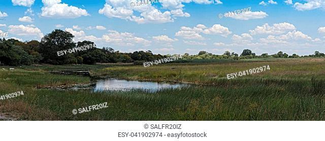 Linyanti Swamp on the border of Botswana, Namibia