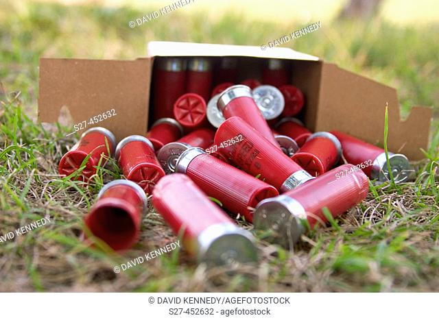 Skeet shooting on a nice day involves a shotgun, shells, bluerock, clay pigeon,over-under, double, barrel, Ruger, and a puller
