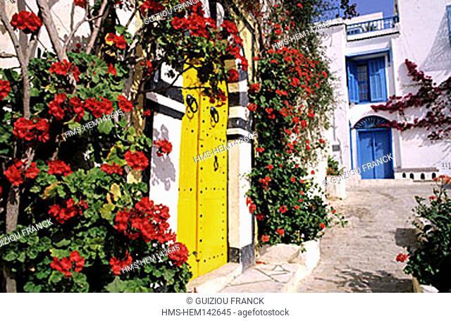 Tunisia, a door in Sidi Bou Said (surroundings of Tunis)